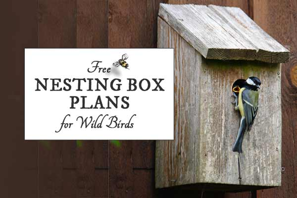 Free Nesting Box Plans for Wild Birds