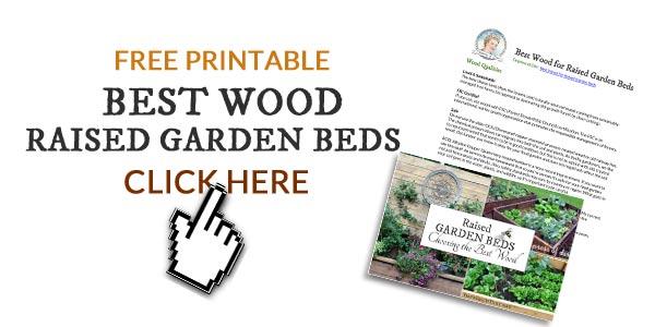 Best Wood for Raised Garden Beds | Empress of Dirt
