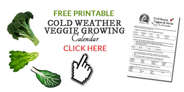 Cold weather veggie growing plan