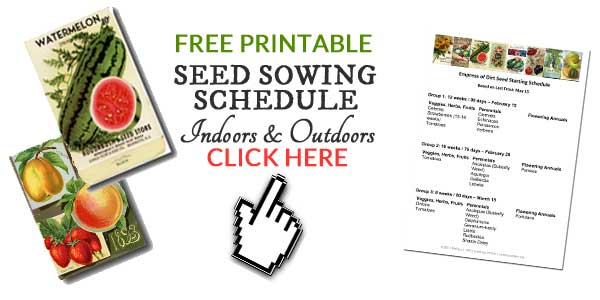 Free sample seed starting schedule for help designing your own plan