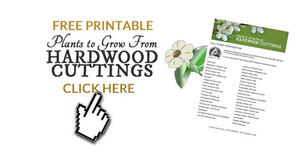 Free Printable Plants to Grow From Hardwood Cuttings