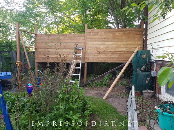 Building a freestanding garden screen for privacy.