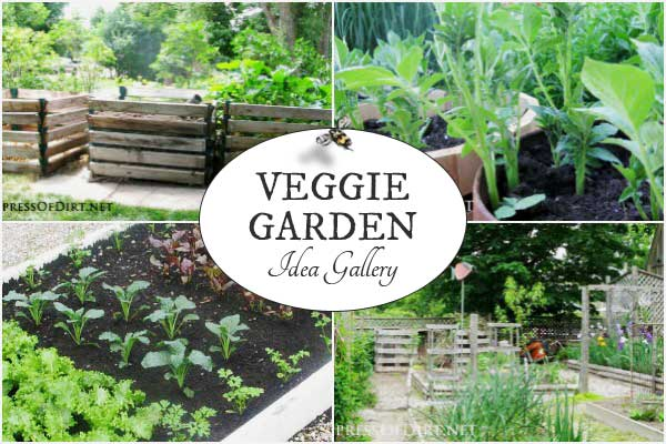 A Gallery Of Ideas For In Ground And Raised Bed Veggie Gardens
