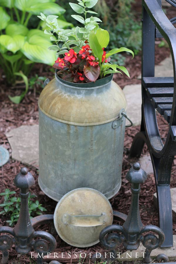 Old farm milk can with pot of red flowers in top.