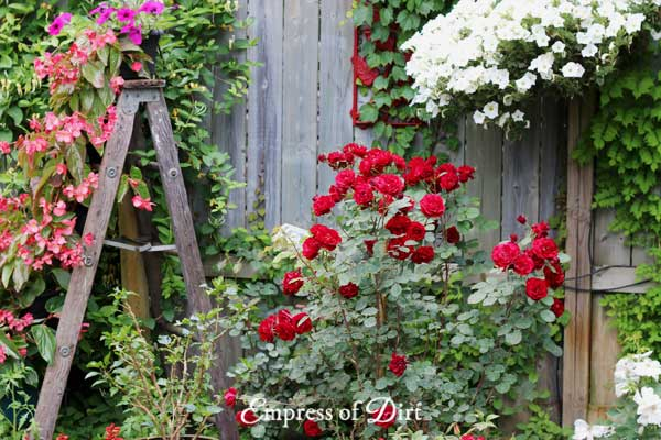Repurposing Wood Ladders As Garden Art
