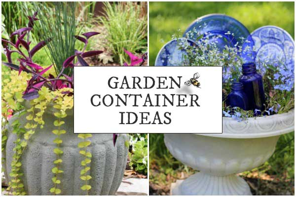 Garden Container Idea Gallery