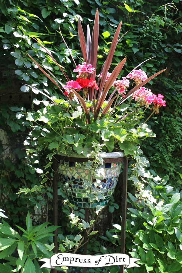 Mosaic planter with zonal geraniums