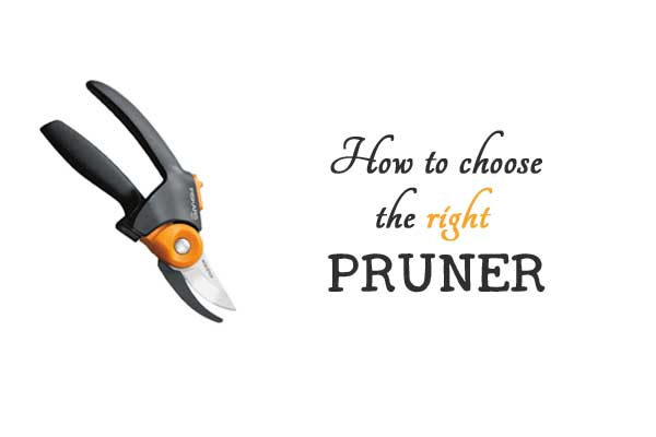 How to choose the right pruner for each task in your garden