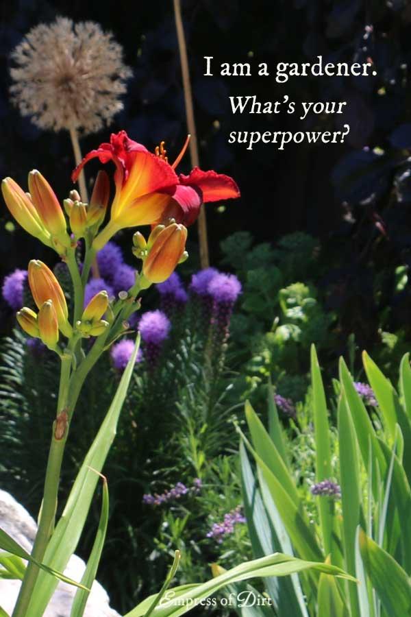 gardener-superpower-c1b