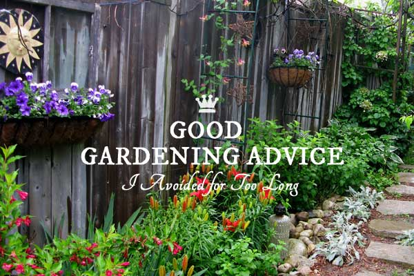 Good Gardening Advice I Ignored For Too Long