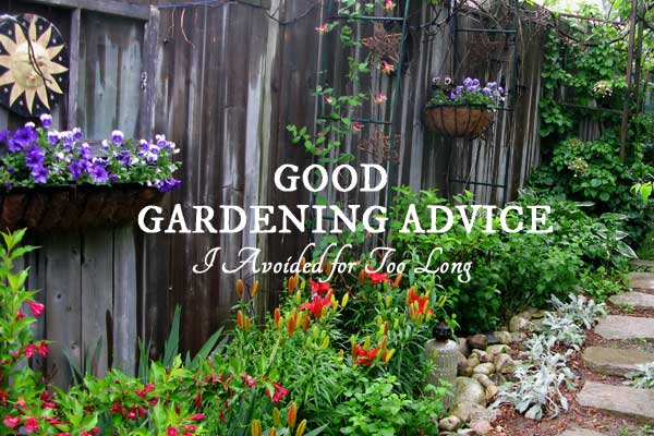 Good gardening advice that would have saved this gardener a lot of problems