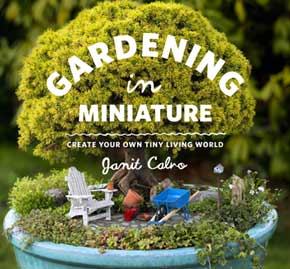 Miniature: Create Your Own Tiny Living World