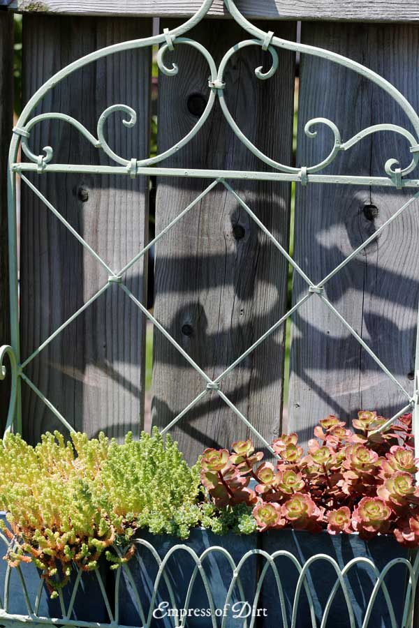 If you want to make a fabulous entrance, you need a great garden gate! Whether they're functional or decorative, garden gates can make a big artistic statement.