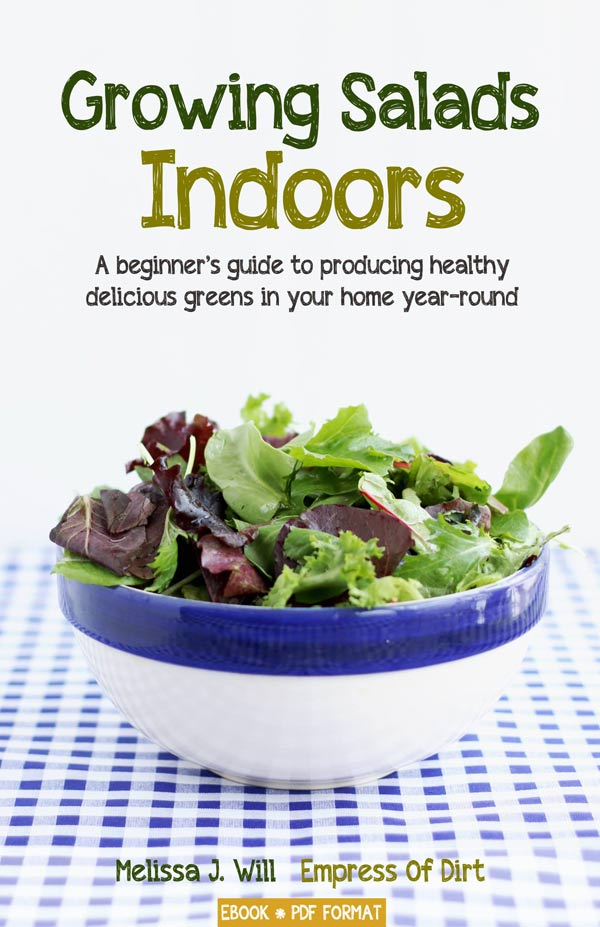 Growing Salads Indoors book cover.