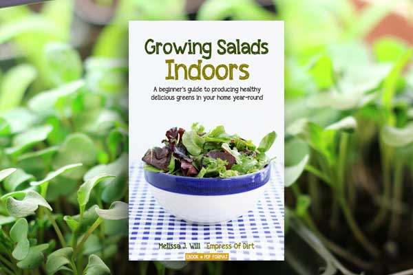 Growing Salads Indoors is an ebook for beginner gardeners interested in growing fresh salad greens indoors, all year-round.