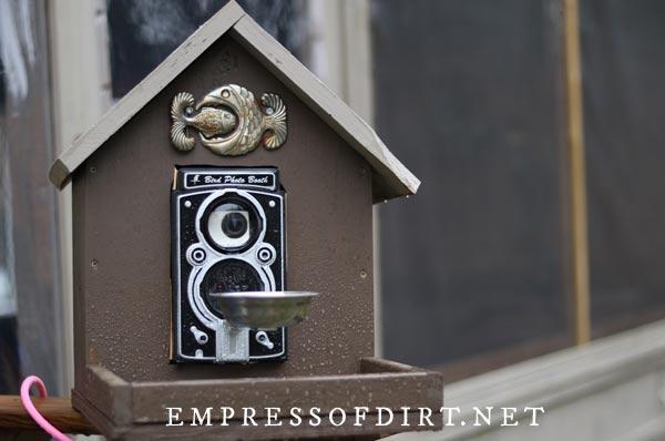 Bird photo booth encased in a birdhouse.