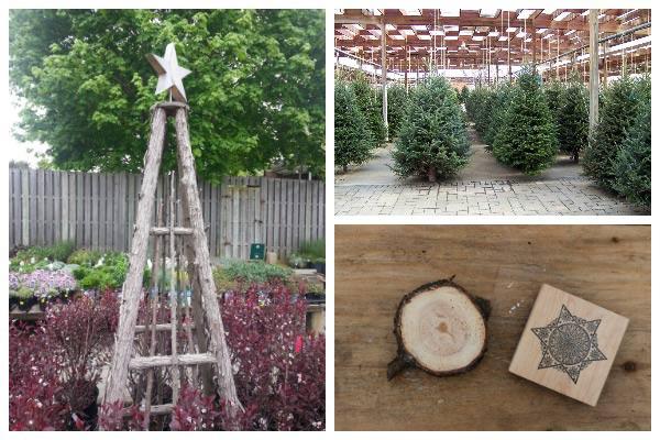 25+ Creative Ways to Reuse Xmas Trees