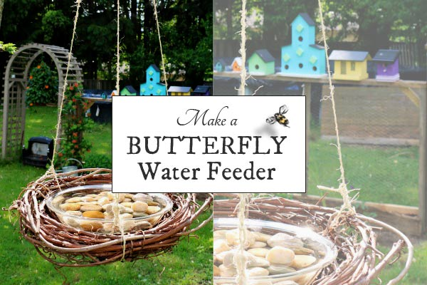 Make a Butterfly Water Feeder