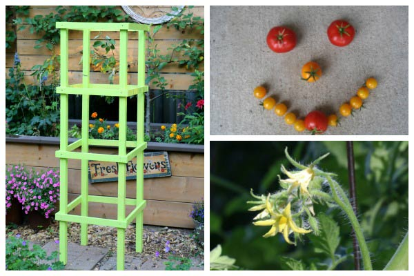 How to Make Tomato Cages from Wood