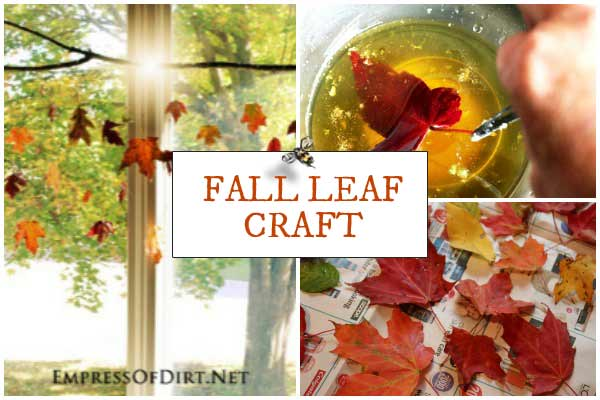 DIY Falling Leaves | Autumn Nature Craft