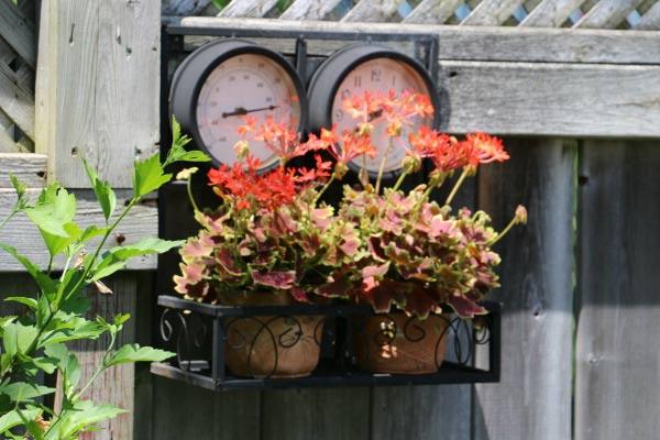 Fence-mounted plant shelf