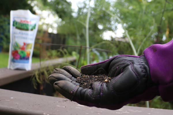 Beginner's Guide to Organic Fertilizers for Home Gardens