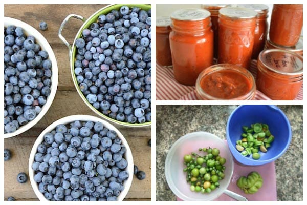 Best Canning & Preserving Recipes by Foodie Gardeners