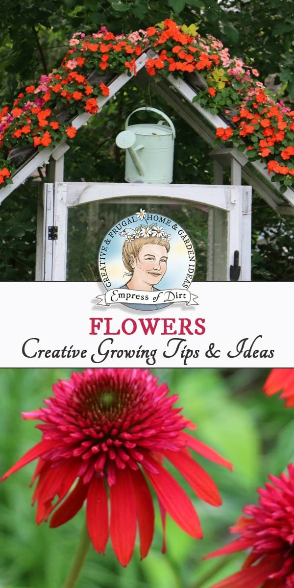 Growing tips for flowers including annuals, perennials, and bulbs.