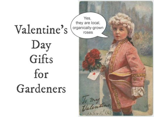 Valentine's Day Gifts for Gardeners | Unexpected Advice