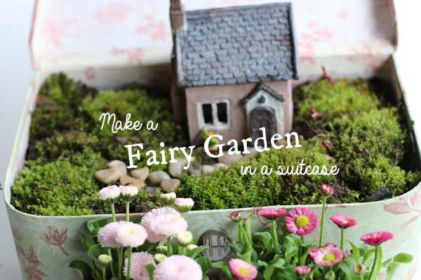 Make a Suitcase Fairy Garden | Miniature Gardening