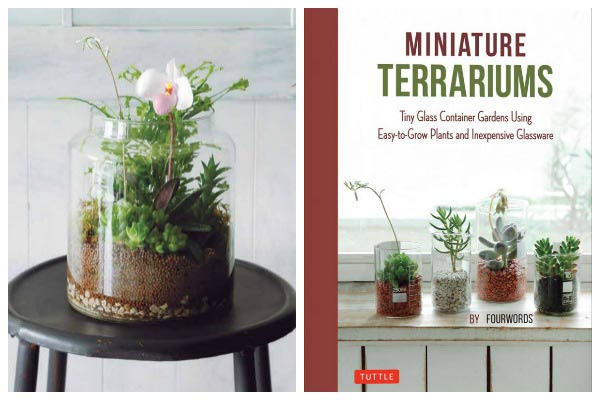 Make a Miniature Wetland Terrarium