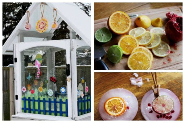 How to Make Fruity Winter Ice Decorations
