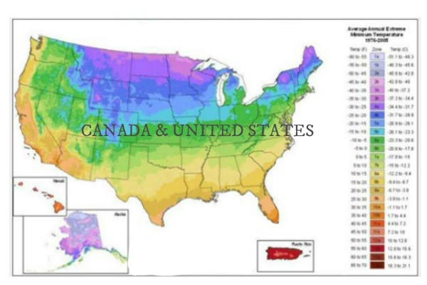How to Find and Understand Your Plant Hardiness Zone