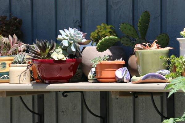 Wall-mounted plant shelf.