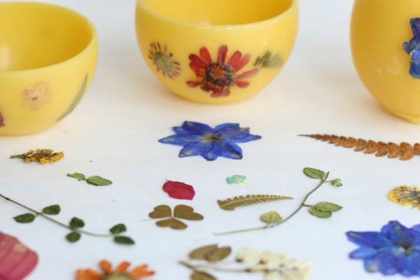 How to press real flowers, leaves, and other botanicals using quick and traditional methods.
