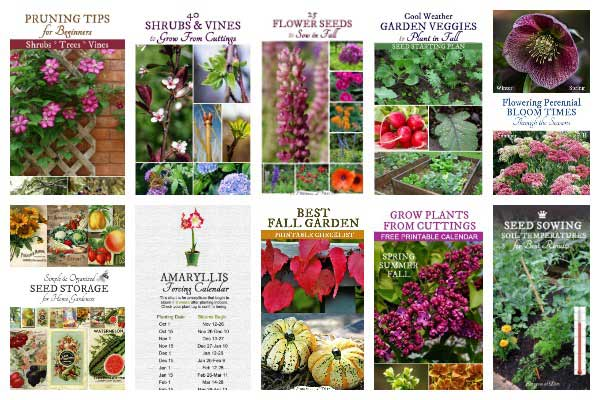Handy Checklists and Guides for Gardeners