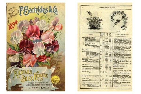 The Origins Of Seed And Plant Catalogs