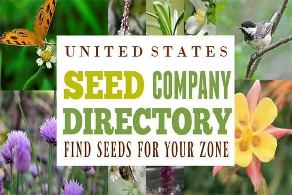 United States seed online seed company listings.