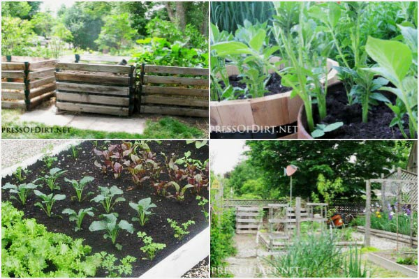 20+ Layout and Design Ideas for Home Veggie Gardens