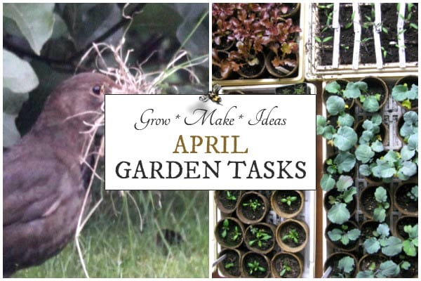 April Garden Tasks | What to Make and Grow
