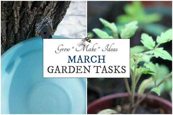 March garden tasks by Empress of Dirt