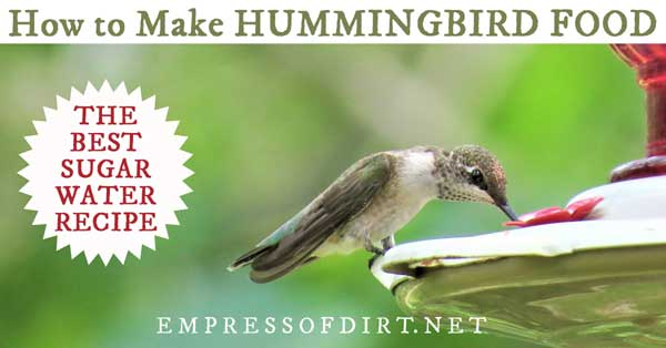 Sugar Water for Hummingbirds
