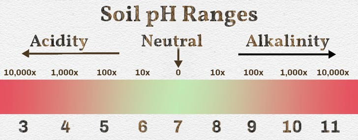 Soil pH scale from acid to alkaline.