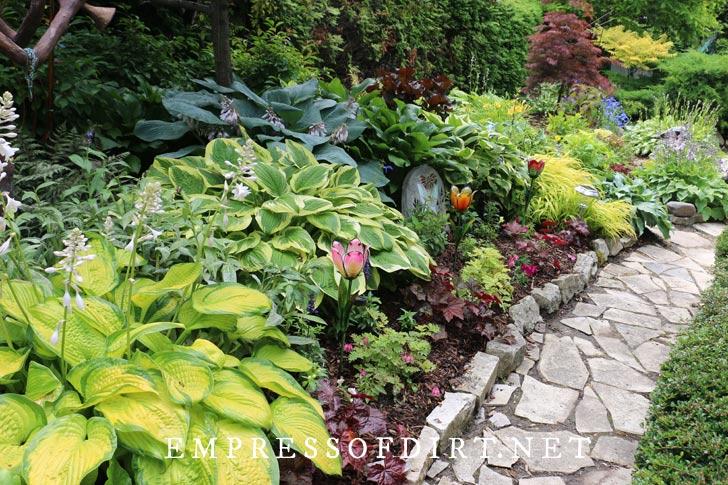 Stone garden path by hostas.