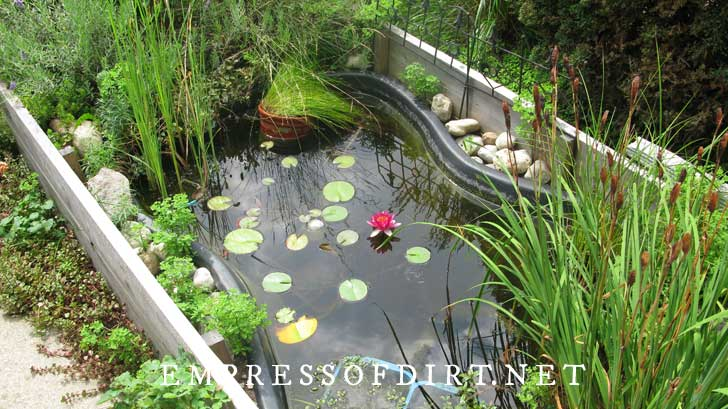 Pond built in raised garden bed with pink water lily.