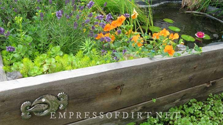 Pond in a raised garden bed.