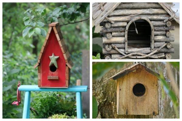 Birdhouse & Nesting Box Ideas