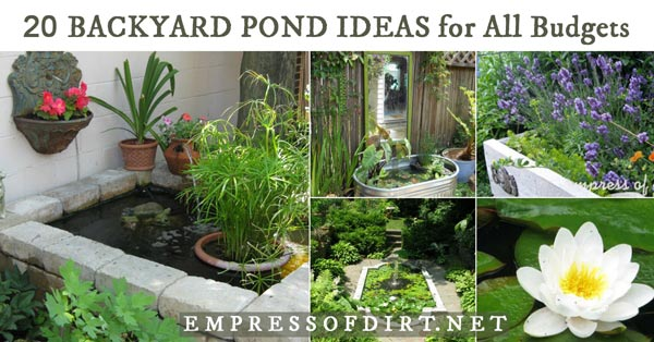 Garden Pond Tips And Ideas