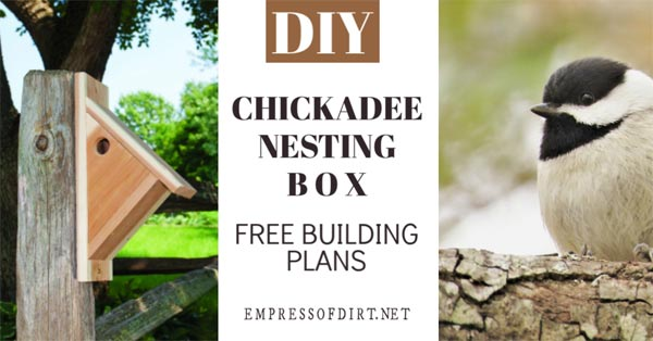 How to make a nesting box for chickadees.