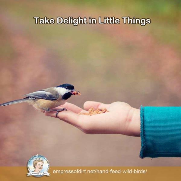 Take delight in little things.